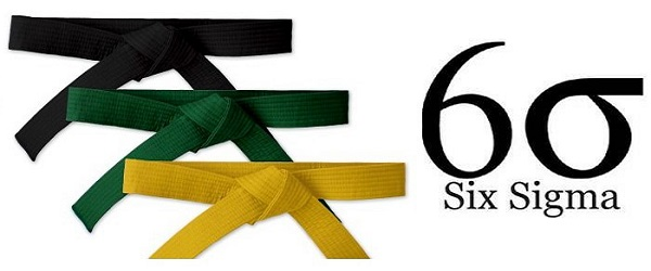 six sigma belt